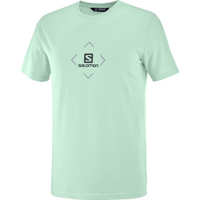 Salomon Cotton SS Tee Men, harbor gray/ashley blue/ebony